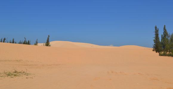 дюны белые